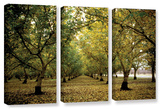 Fall Orchard  3 Piece Gallery-Wrapped Canvas Set