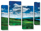 Vineyard And Lake  4 Piece Gallery-Wrapped Canvas Staggered Set