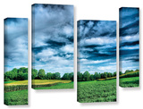 Field Of Dreams  4 Piece Gallery-Wrapped Canvas Staggered Set