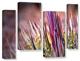 Agave  4 Piece Gallery-Wrapped Canvas Staggered Set