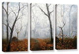 Autumn Mist  3 Piece Gallery-Wrapped Canvas Set