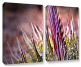 Agave  2 Piece Gallery-Wrapped Canvas Set