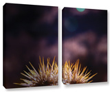 Obviousness Has Its Advantages  2 Piece Gallery-Wrapped Canvas Set