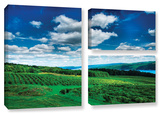 Vineyard And Lake  3 Piece Gallery-Wrapped Canvas Flag Set