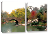 Saturday Central Park  2 Piece Gallery-Wrapped Canvas Set