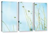 30 Second Daydream  3 Piece Gallery-Wrapped Canvas Set