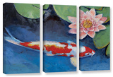 Koi And Water Lily  3 Piece Gallery-Wrapped Canvas Set