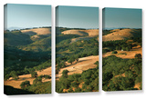 Hills Of California  3 Piece Gallery-Wrapped Canvas Set