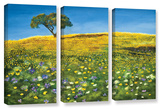 Golden Meadow  3 Piece Gallery-Wrapped Canvas Set