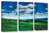 Vineyard And Lake  3 Piece Gallery-Wrapped Canvas Set