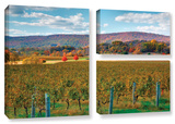 Vineyard In Autumn  3 Piece Gallery-Wrapped Canvas Flag Set