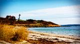 Nobska Lighthouse Landscape