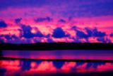 Cranberry Bog Sunset