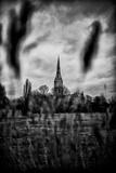 Cathédrale de Salisbury Papier Photo par Rory Garforth