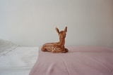 Baby Deer on Bed