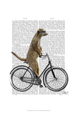 Meerkat on Bicycle