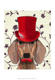 Dachshund With Red Top Hat