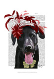 Black Labrador With Red Fascinator