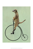 Meerkat on Black Penny Farthing Reproduction d'art par Fab Funky