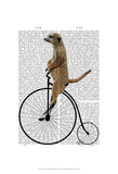 Meerkat on Black Penny Farthing