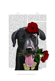 Black Labrador with Roses