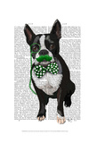 Boston Terrier With Green Moustache And Spotty Green Bow Tie