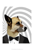 Debonair James Bond Dog