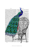 Peacock on Chair Reproduction d'art par Fab Funky