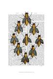 Medieval Bees