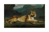 Lioness Reclining  C1855