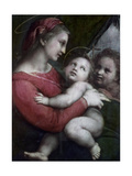 Madonna Della Tenda  C1512