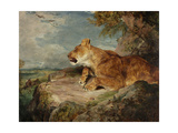 The Lioness  C1824-27