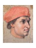 Portrait of a Cardinal  C1513-20