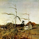 """Autumn Cornfield ""October 1  1950"
