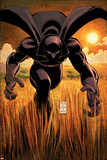 Black Panther No1 Cover: Black Panther