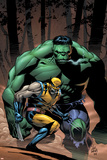 Incredible Hulk No80 Cover: Wolverine and Hulk
