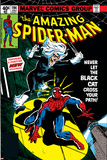 Amazing Spider-Man No194 Cover: Spider-Man and Black Cat