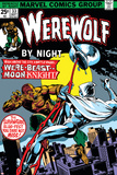 Werewolf By Night No33 Cover: Moon Knight and Werewolf By Night