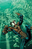 Marvel Adventures Spider-Man No32 Cover: Spider-Man and Hydro Man