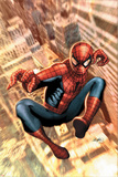 The Amazing Spider-Man No549 Cover: Spider-Man