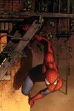 Marvel Adventures Spider-Man No41 Cover: Spider-Man