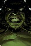 Avengers 16 Cover: Hulk