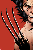 Wolverine No16 Cover: Wolverine