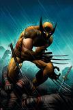 Wolverine No20 Cover: Wolverine