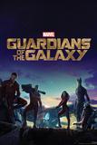 Guardians of the Galaxy: Rocket Raccoon  Groot  Star-Lord  Drax  Gamora