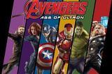 The Avengers: Age of Ultron - Hawkeye  Black Widow  Captain America  Iron Man  Hulk  and Thor