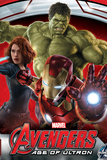 The Avengers: Age of Ultron - Iron Man  Black Widow  and Hulk