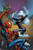 Marvel Adventures Spider-Man No22 Cover: Spider-Man  Black Cat  and Mandarin