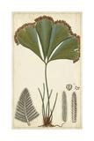 Foliage Botanique I
