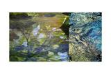River Mod Panel II